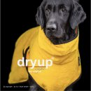 Hundemantel fit4dogs dryup cape Yellow