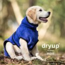 Dryup Cape mini Blueberry