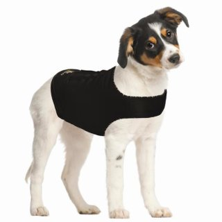 Zen Dog Compression Shirt