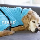 Hundemantel fit4dogs dryup cape Cyan