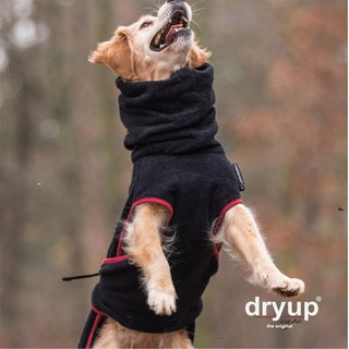 Hundemantel fit4dogs dryup cape Schwarz